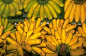 chandra-ekajaya-kripiki-pisang